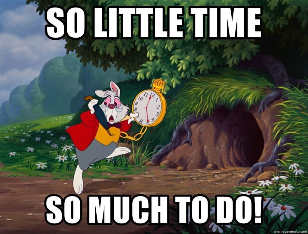 Alices White Rabbit So Little Time So Much to Do Meme | Busy Life Healthy Wife